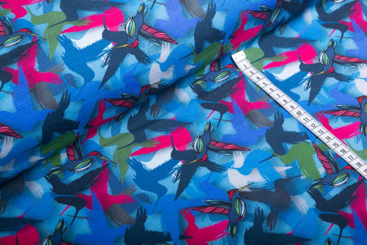 Joyeux blau Kolibri