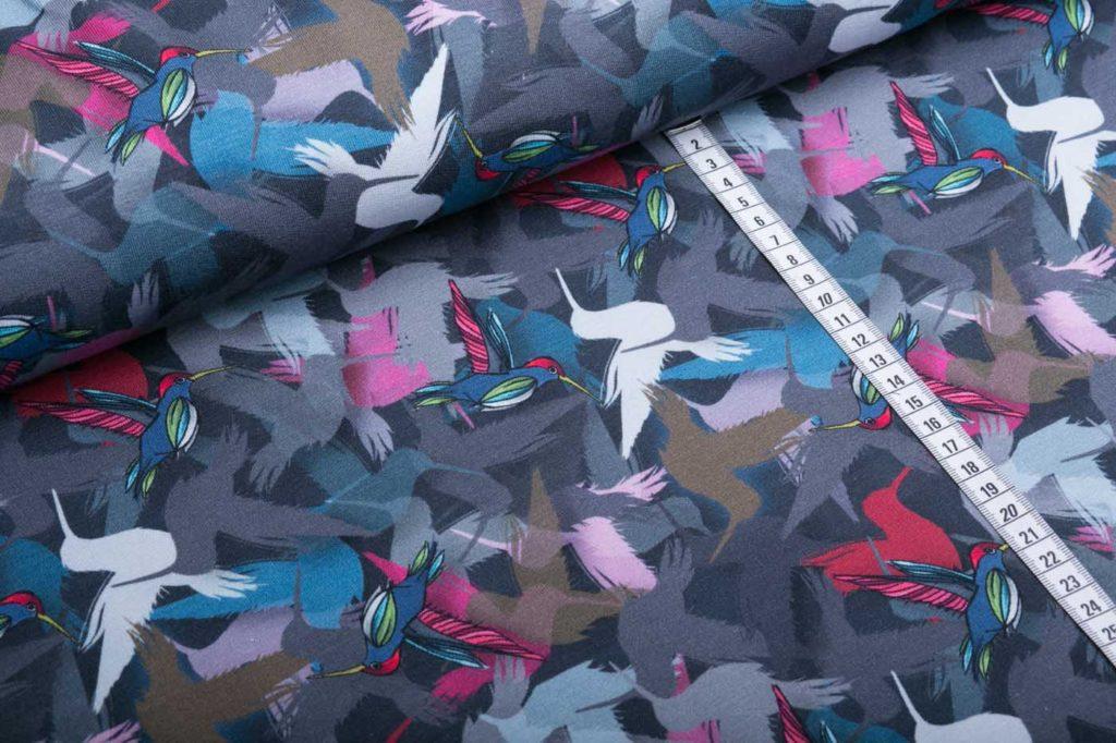 Joyeux grau Kolibri